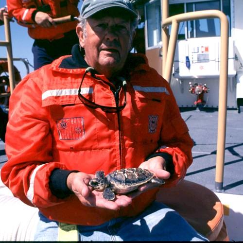 Hawksbill release, Rhode Island