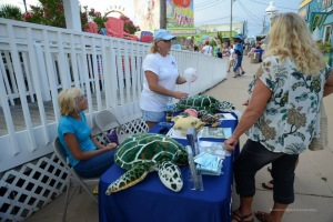 Sea Turtle Outreach