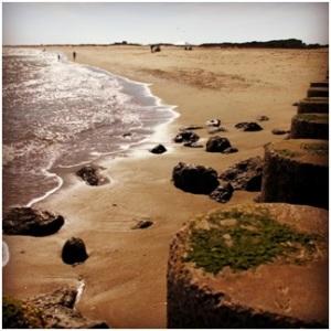 A healthy NC beach