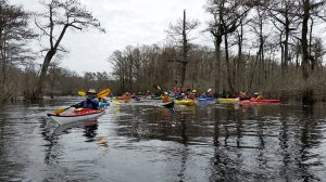 Paddling with Cape Fear River Watch