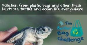 Challenge yourself to use less plastic!