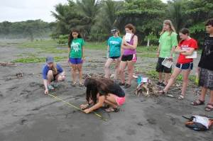 Jessica learns how to measure a leatherback sea turtle with other teens in Costa Rica