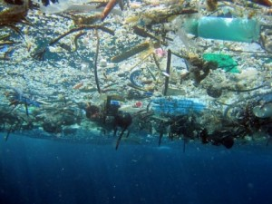 Marine debris easily accumulates in certain gyres in the ocean because of circulating water currents
