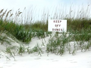 Signs help beach visitors know to stay off sand dunes
