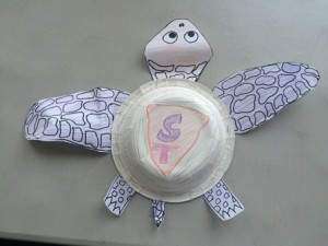 """This """"super"""" turtle has a shell like a box turtle so it can crawl inside to protect itself, but also has big front flippers so it is a good swimmer."""