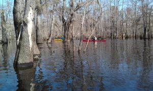 Paddling in with Cape Fear River Watch